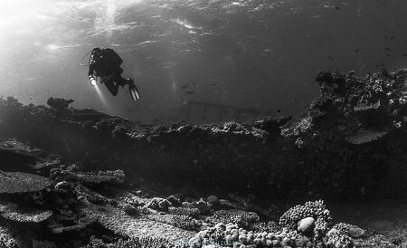 Mystic landscape of Abu Nuhas reef - Egypt, many wrecks a... by Ivan Vychodil
