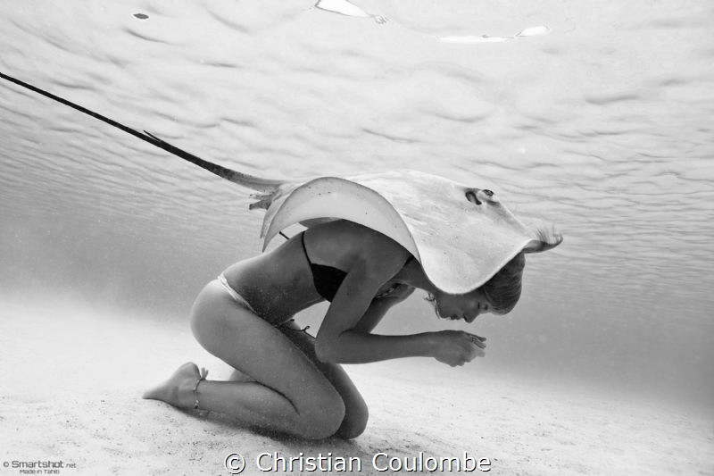 The mermaid and the stingray by Christian Coulombe