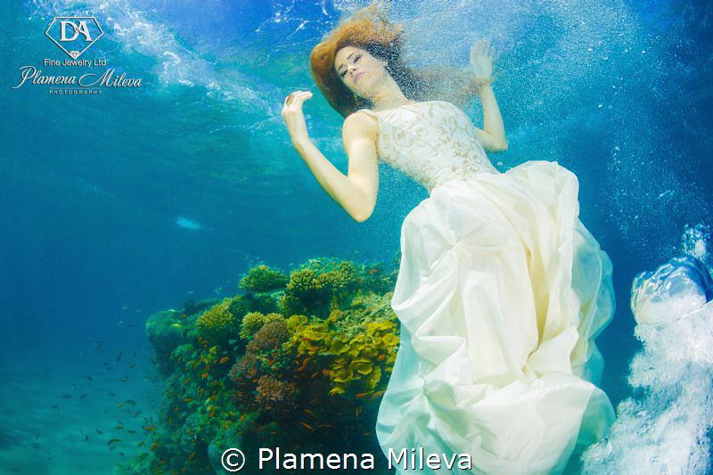 Fallen angel by Plamena Mileva