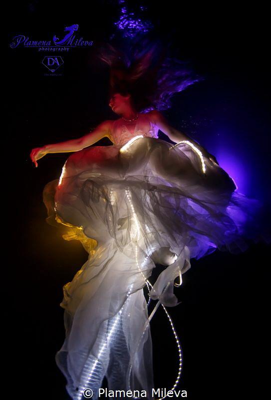 Shining jellyfish by Plamena Mileva