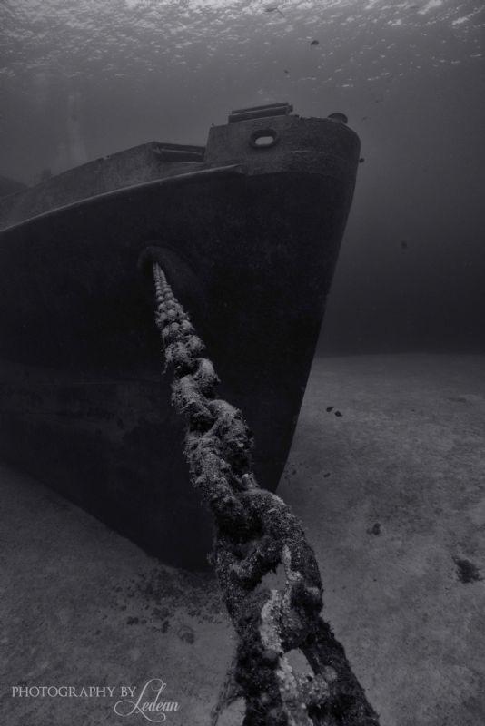 Firmly Anchored!   D800, 17mm by Ledean Paden