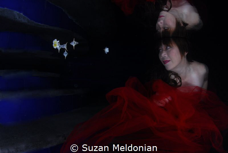 Lady in Red by Suzan Meldonian