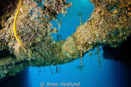 Underwater mirror  by Anne Hedlund