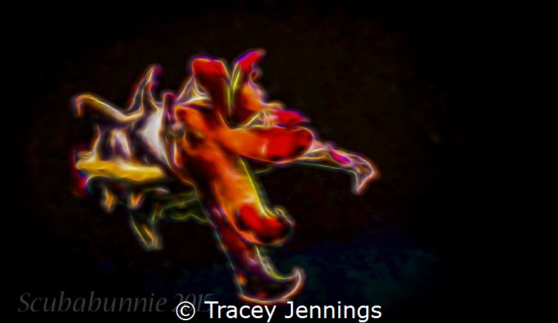 How flamboyant can you go .... ? by Tracey Jennings
