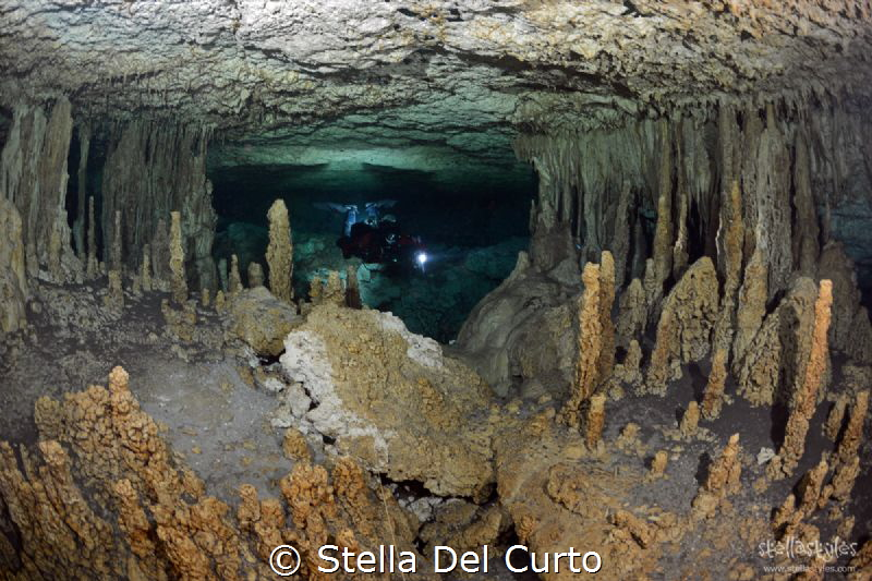 Aktun Ha cave (Car Wash) - Downstream section by Stella Del Curto