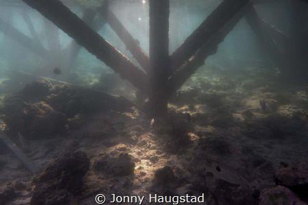 Under the Jetty, Mabul by Jonny Haugstad