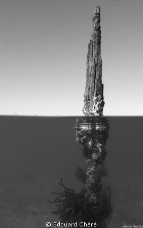 Thau lagoon by Edouard Chéré