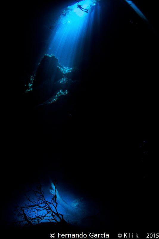 Cenote Pit, Mexico. by Fernando García