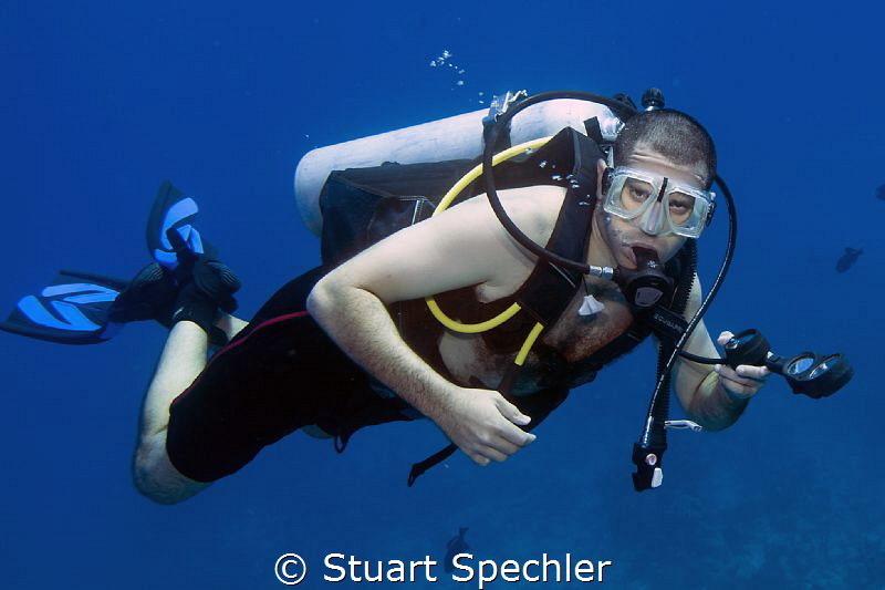 A focused diver in good focus.  Beautiful diving in Turks... by Stuart Spechler