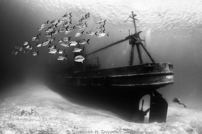 The USS-Kittiwake is one of my favorite dives. Every time... by Susannah H. Snowden-Smith