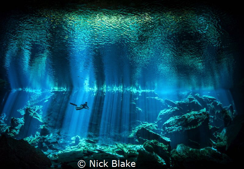 'The Light Shines On'
