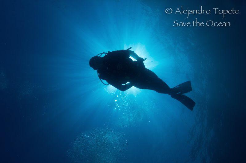 Diver in sun Rays, La Paz México by Alejandro Topete