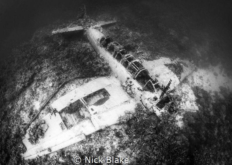 Jill Torpedo Bomber, Truk Lagoon by Nick Blake