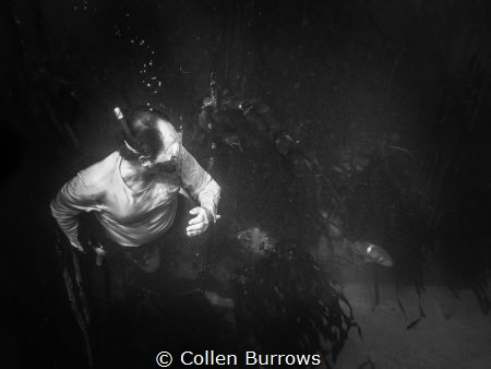 Surprise moment by Collen Burrows