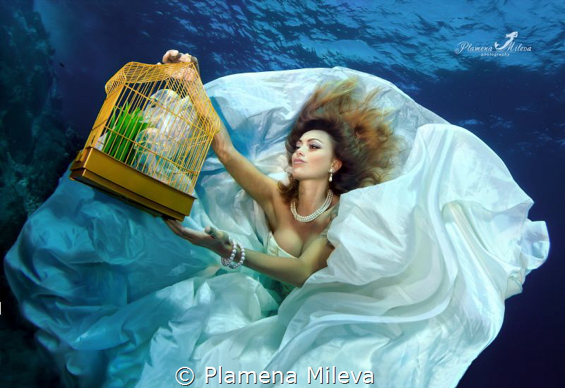 """The cage"" by Plamena Mileva"