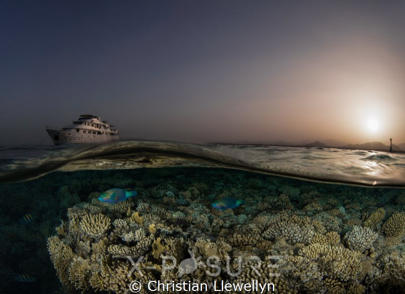 Location: Red Sea
