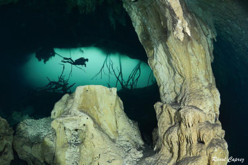 Cenote scenery by Raoul Caprez