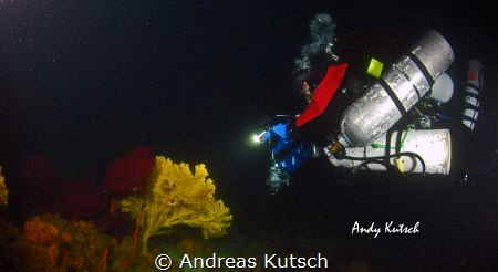 Tec Diver checking out a gorgonia by Andreas Kutsch