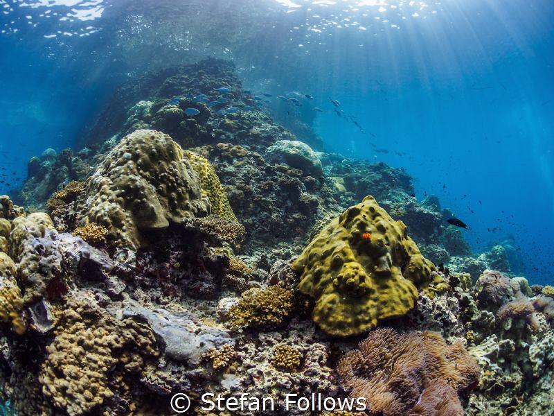 Hometown  Sail Rock, Thailand by Stefan Follows