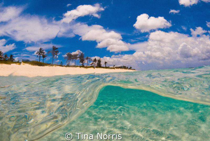 The Perfect Beach Day by Tina Norris
