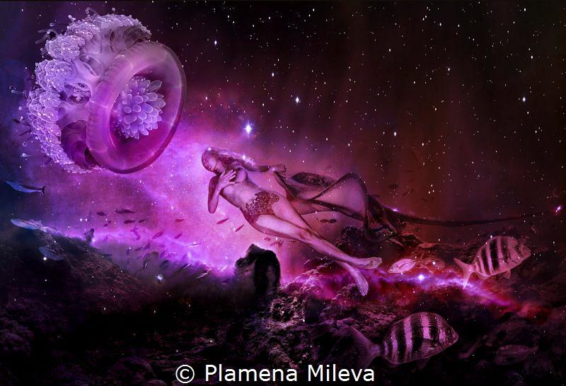 ORBITAL MARITIME by Plamena Mileva