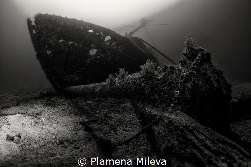 Ocean Secret Mysteries by Plamena Mileva