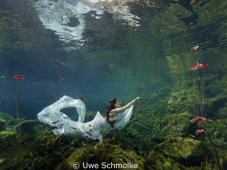 Pure esthetic by Uwe Schmolke