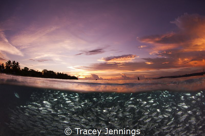 Whilst everyone else returned to the boat, I grabbed anot... by Tracey Jennings