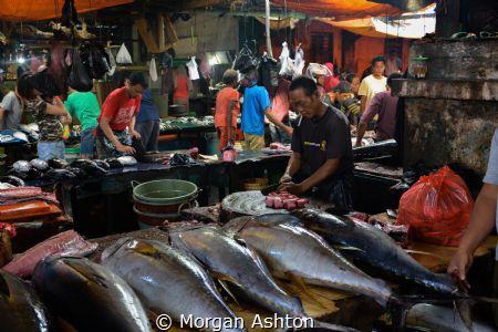 Sorong Fish Market by Morgan Ashton