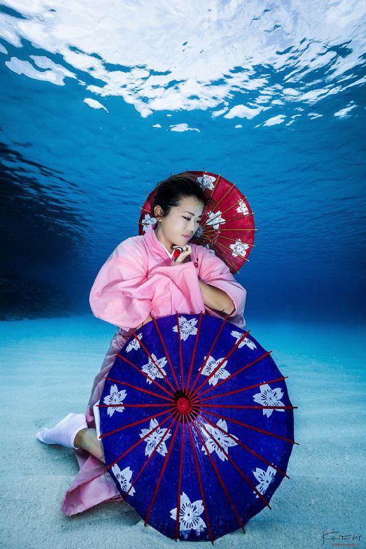 Wagasa - Umbrella in japanese by Kelvin H.y. Tan