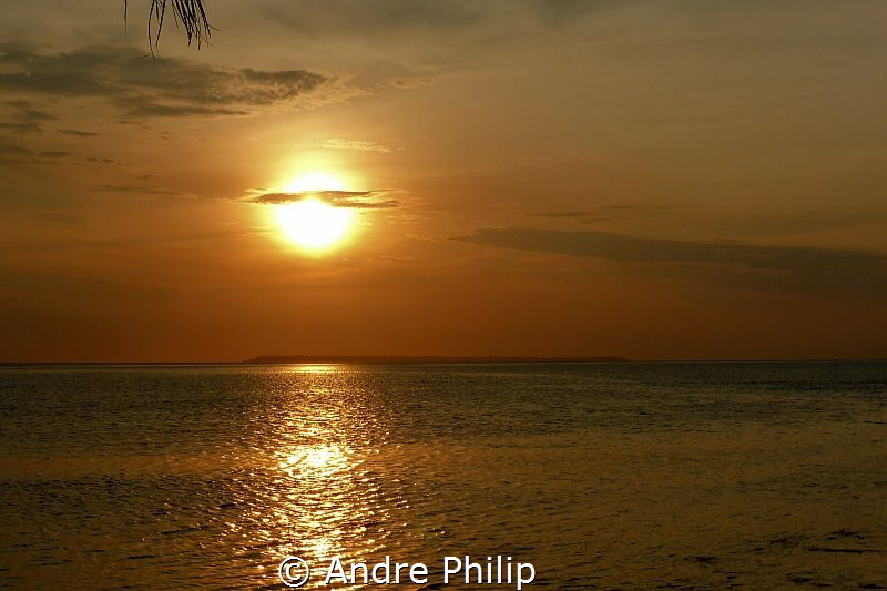 The Maratua Atoll - a really great dive destination! by Andre Philip
