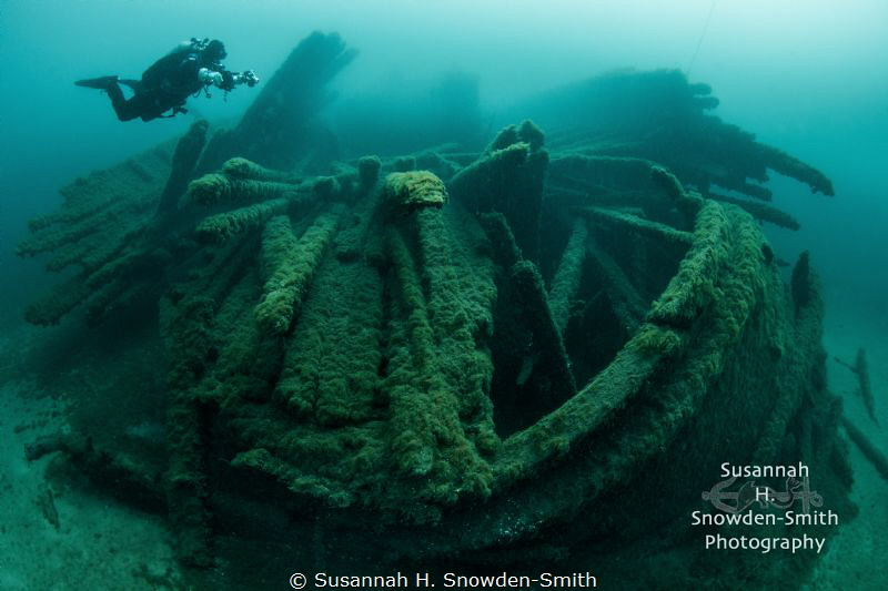 """Preserved By The Cold""