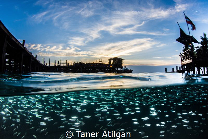 Kapalai resort by Taner Atilgan