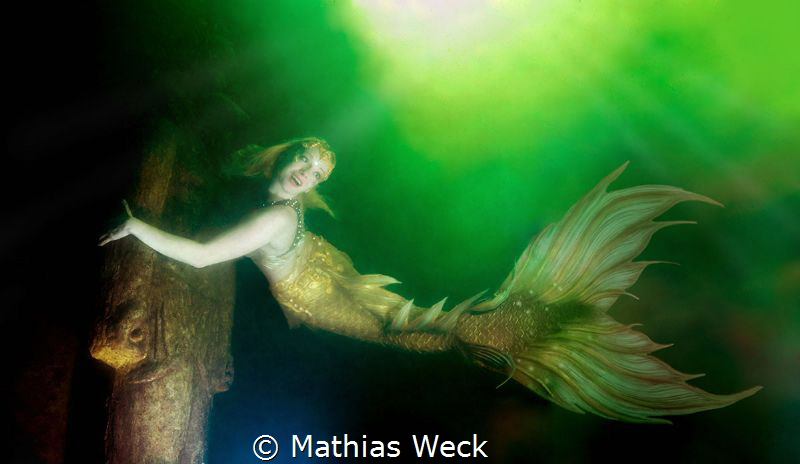 "Mermaid Daniela Rodler in artificial lake ""Natura Gart"" i... by Mathias Weck"