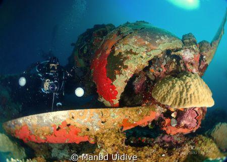 SEAPLANE Fish 'n Fins Palau by Manbd Uidive