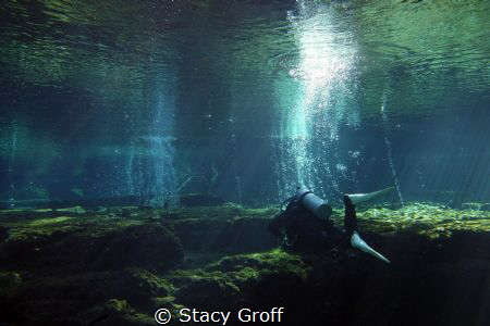 Taken at Ginnie Springs, FL.  Diver over the top of the c... by Stacy Groff