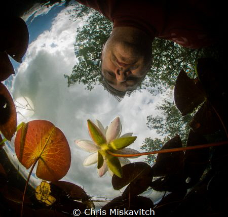 Accidental selfie?!  trying to get in the right spot and ... by Chris Miskavitch