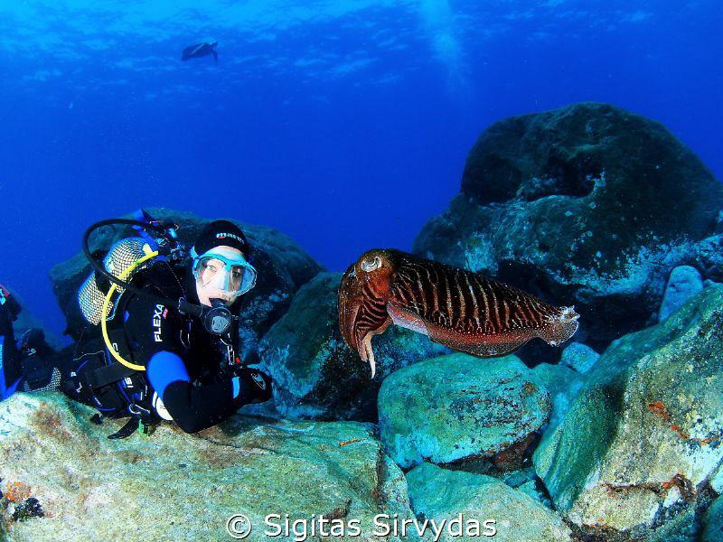 Sepia and diver by Sigitas Sirvydas