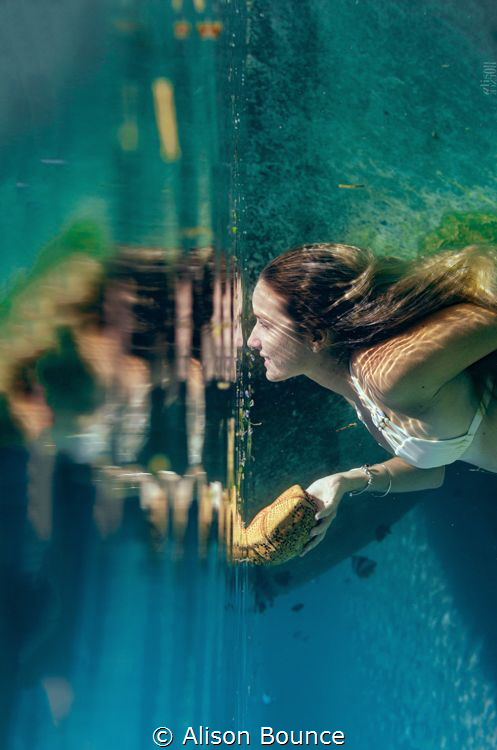 Miroir Miroir by Alison Bounce