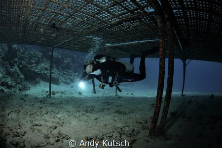 Diver under plattform by Andy Kutsch