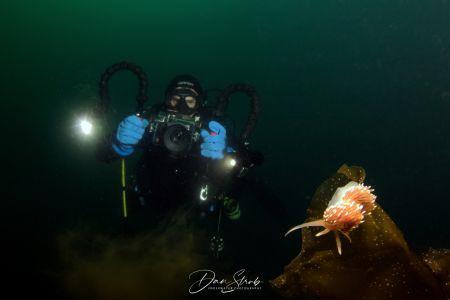 Nudi & diver by Daniel Strub