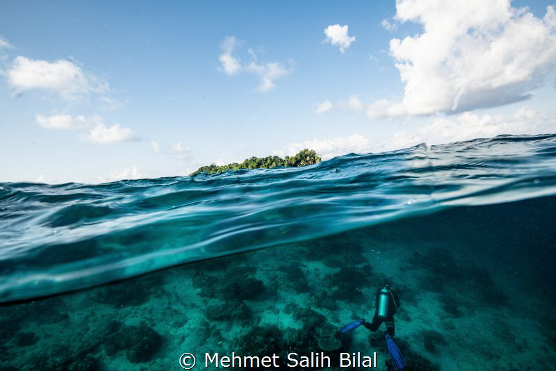 Sipadan island and a diver. by Mehmet Salih Bilal