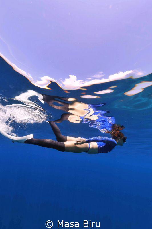 Fish circling by Masa Biru
