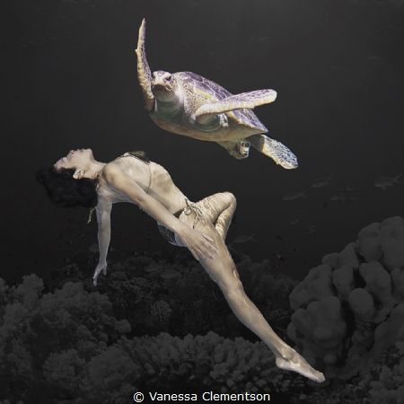synchronised swimming by Vanessa Clementson