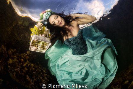 Fairy of Spring by Plamena Mileva