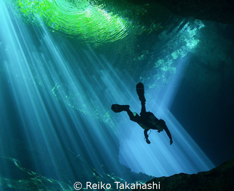 I dived for the first time in Cenote. Although I had divi... by Reiko Takahashi