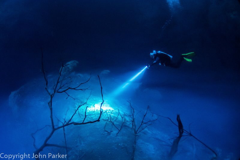 El Pit Cenote. There is a Hydrogen Sulphide Layer at 27 m... by John Parker