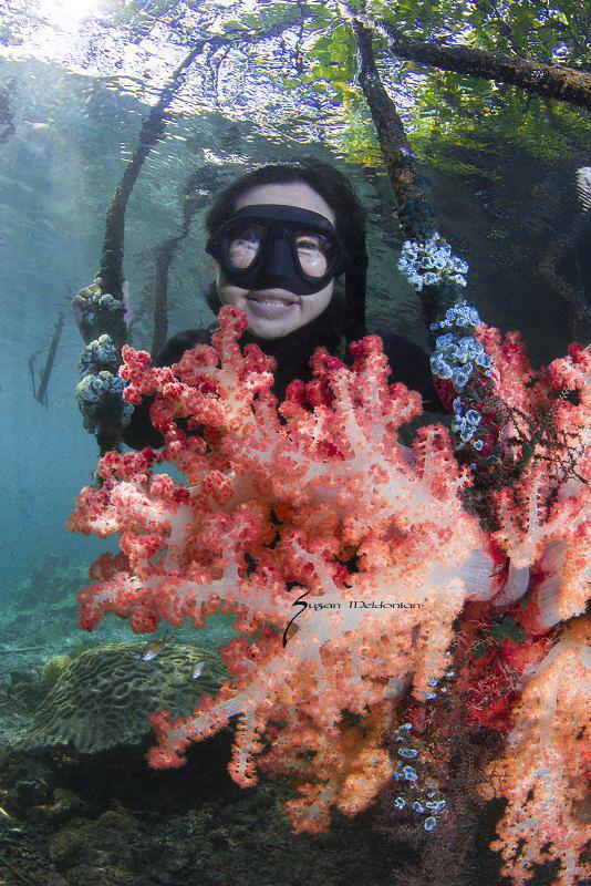Exploring the mangroves of Raja Ampat by Suzan Meldonian