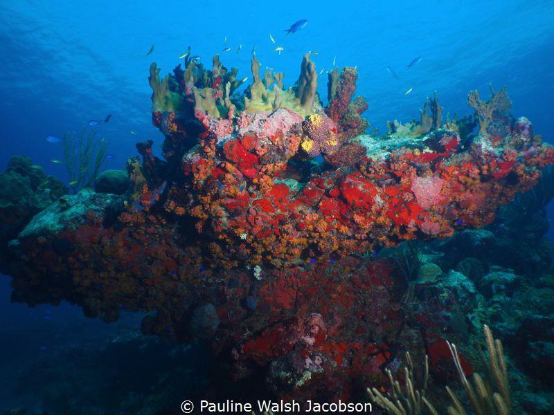 Dog Rocks, U.S. Virgin Islands by Pauline Walsh Jacobson