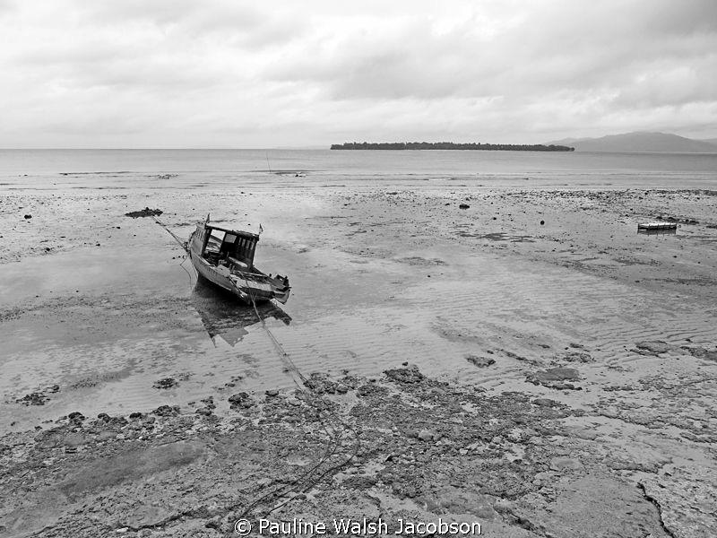 Low Tide, Bunaken Island, Indonesia by Pauline Walsh Jacobson